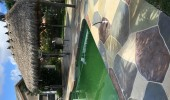 concrete-resurfacing-pool-deck-30