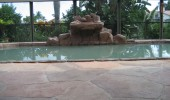 decorative-concrete-pool-deck-013